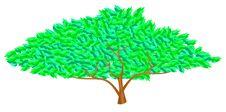 Free Green Tree Royalty Free Stock Photos - 15561758