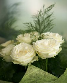 Free Bouquet Of The Bride Stock Photography - 15561942