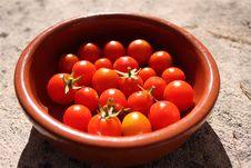 Free Cheery Tomato Stock Photos - 15562163