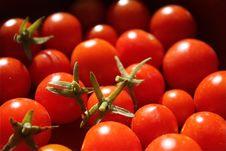 Free Cheery Tomato Royalty Free Stock Photography - 15562177