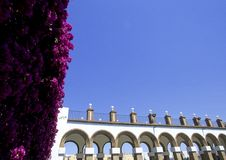 Free Flowers With Architecture Royalty Free Stock Photos - 15566348