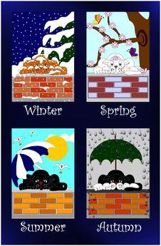 Cats Seasons Royalty Free Stock Photo