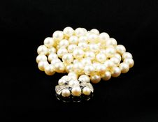 Free Pearls Royalty Free Stock Images - 15566759