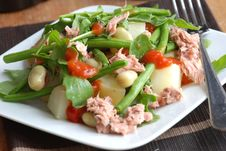 Free Tuna And Vegetable Salad Royalty Free Stock Photography - 15568067