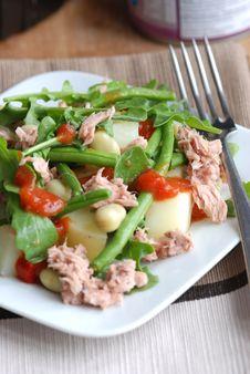 Free Tuna And Vegetable Salad Royalty Free Stock Photo - 15568085