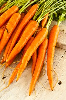 Free Carrots Straight From The Ground Royalty Free Stock Photography - 15568737