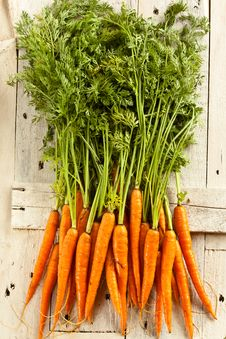 Free Carrots Straight From The Ground Stock Photo - 15568830