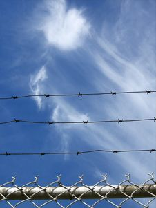 Free Barb Wire Sky Royalty Free Stock Photography - 15569577