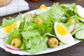 Free Egg Salad Royalty Free Stock Photos - 15577258