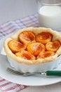 Free Apricot Tart Stock Photography - 15578922