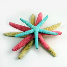 Colorful Stacked Starfish Stock Photography