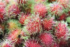 Free Rambutan Fruit Royalty Free Stock Photo - 15572005