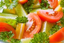 Free Fresh Vegetables Stock Images - 15572244