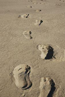 Free Footprints Royalty Free Stock Photo - 15572595
