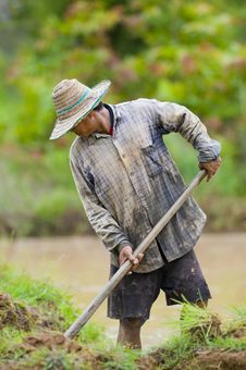 Free Asian Farmer Preparing The Ground Stock Images - 15573464
