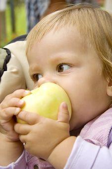 Big Apple Royalty Free Stock Image