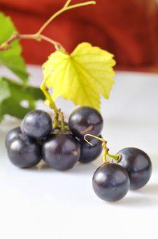 Free Grape On White Royalty Free Stock Image - 15577886
