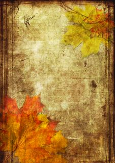 Free Red Sheets Maple On Canvas Stock Photos - 15578043