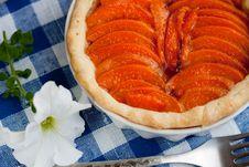 Apricot Tart Stock Images