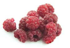 Free Sweet Raspberry Royalty Free Stock Images - 15579689