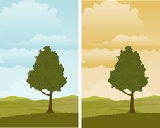 Free Spring Landscape Royalty Free Stock Image - 15580866