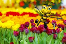 Free Honey Bee Flying Above The Flowers Stock Photo - 15583860