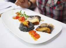Free Fish Fillet With Black Risotto And Tomato Relish Stock Photography - 15584162