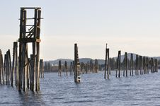 Free Abandoned Pilings Stock Image - 15585201