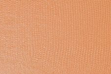 Free Lizard Skin Stock Photo - 15586020