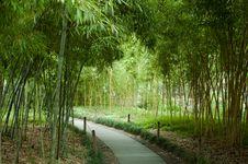 Free Beautiful Hangzhou Stock Photo - 15586160