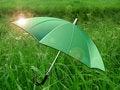 Free Umbrella  On Green Meadow Royalty Free Stock Image - 15595166