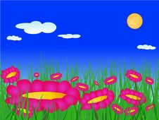Flowers On The Meadow Vector Stock Images