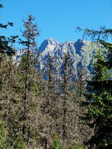 Free Mountains Landscape. Royalty Free Stock Photo - 15593455