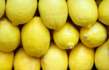 Free Fresh Lemon Royalty Free Stock Photo - 15594085