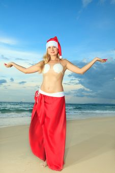 Free Tropical Christmas Royalty Free Stock Images - 15594679