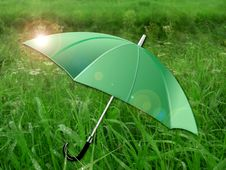Umbrella  On Green Meadow Royalty Free Stock Image