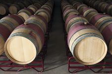 Free Wine Barrels Royalty Free Stock Images - 15595859