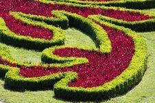 Free Flower Garden, Royalty Free Stock Image - 15599666
