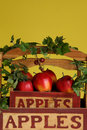 Free Apple Ivy Basket On Yellow Royalty Free Stock Photo - 1562005