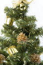 Free Christmas Tree Brunches Closeup Stock Images - 1568124