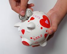 Free Kid Hands With Piggy Bank Royalty Free Stock Photo - 1562815