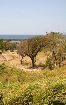 Free Green Meadow Along Coastline Stock Photo - 1564040
