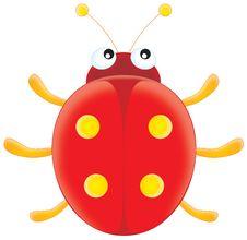 Free Ladybird Stock Image - 1565271