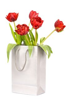 Free Five Red Tulips In Silver Paper Bag Stock Photo - 15600370