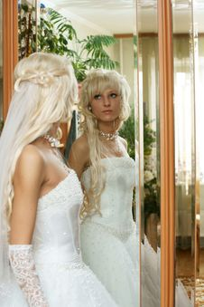 Free The Beautiful Bride Royalty Free Stock Images - 15600549
