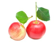 Ripe Red Apple With Green Leaf Stock Photo