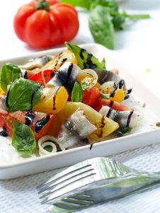 Free Tomatoes Salad Stock Image - 15601971