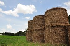 Free Thatch Roll Stock Images - 15604244
