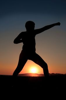 Free Karate Kid Royalty Free Stock Image - 15607406