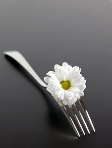 Free Fork With Daisy Stock Photos - 15610373